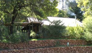 Treetops - A Montessori and International Baccalaureate School - Education Perth
