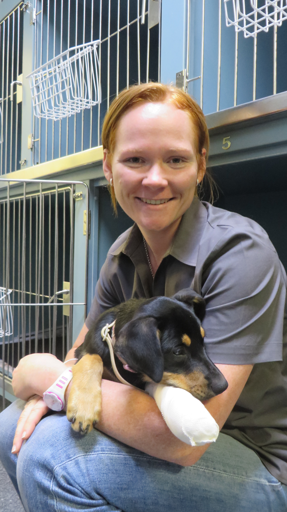 Grafton Veterinary Clinic - Education Perth